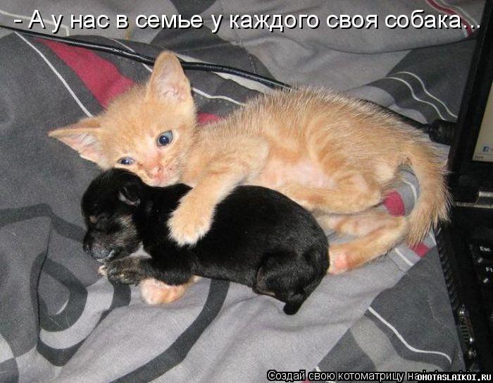 post-2-0-63144100-1304592389_thumb.jpg