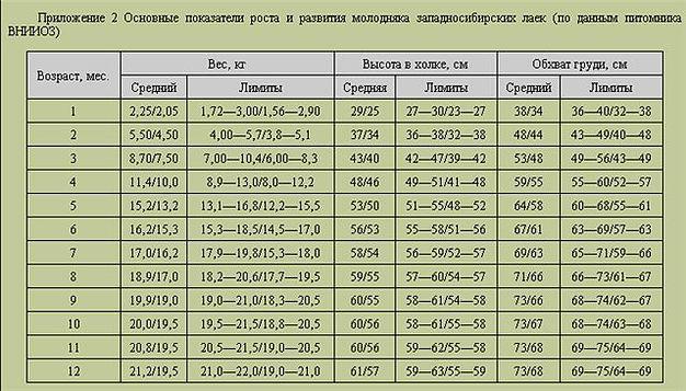 post-199-0-50319600-1462388832_thumb.jpg