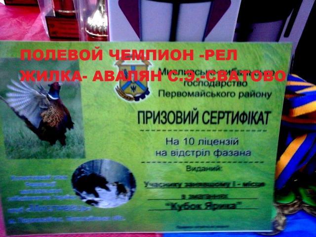 post-3062-0-49728200-1413444946_thumb.jpg