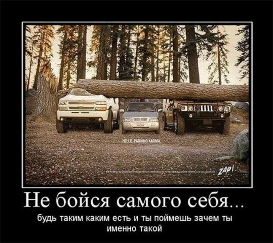 post-305-0-67972500-1320333483_thumb.jpg