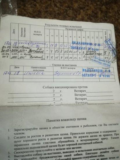 Асти_дипломы.jpg