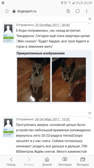 Screenshot_20190131-203950.png