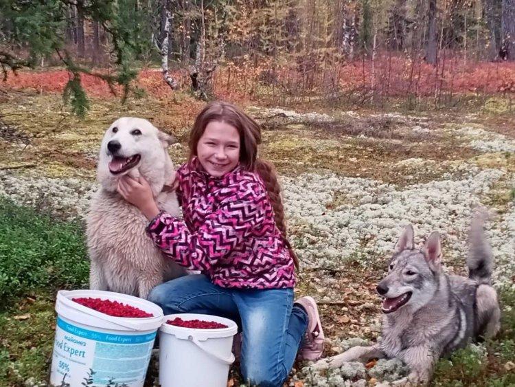 Лисса с Т.кр. Любава и гибрид Аля.jpg