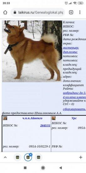 Screenshot_2021-03-10-20-33-07-574_com.android.chrome.jpg