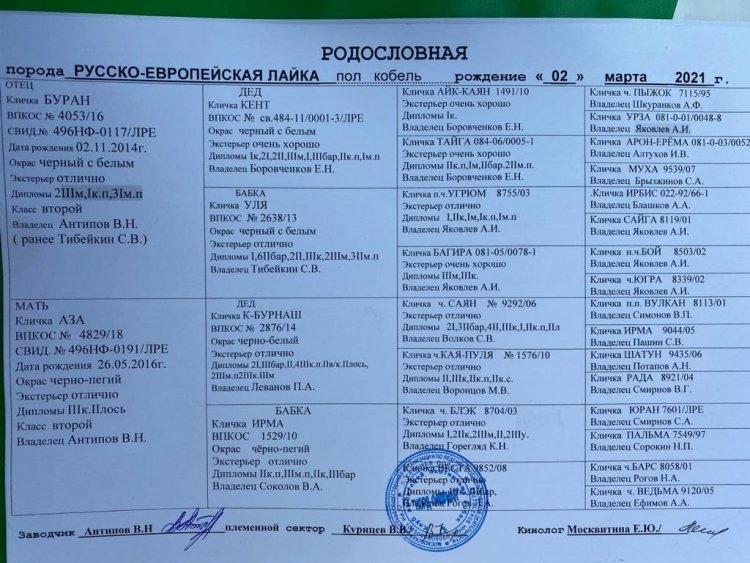 7ecac4f5-f15a-41d7-bc12-44d7a6310245.JPG