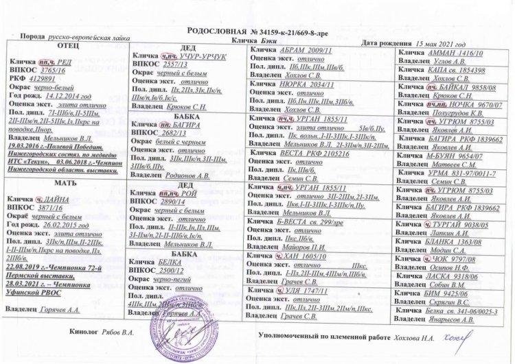 https://www.ohotaslaikoi.ru/forums/uploads/monthly_2021_06/1361697034_2323(2)_page-0001.thumb.jpg.01ce3098032938ebbb19f20d838d745a.jpg