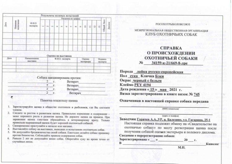 https://www.ohotaslaikoi.ru/forums/uploads/monthly_2021_06/726356973_2323(1)_page-0001.thumb.jpg.8ef3ac55bbb867cb7a17e26af9903177.jpg