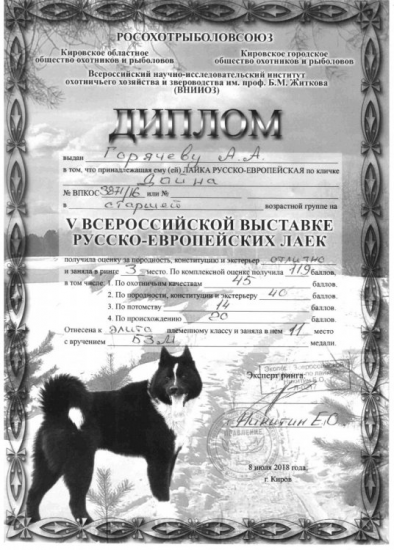 https://www.ohotaslaikoi.ru/forums/uploads/monthly_2021_06/image.thumb.png.ba565b66120f8a06e016f5484bcb03fa.png
