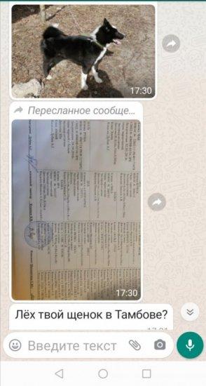 Screenshot_20210727_215031.jpg