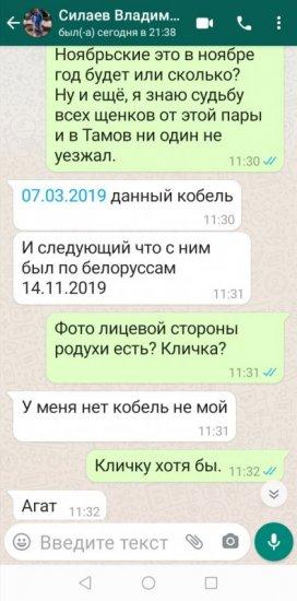 Screenshot_20210727_215346.jpg