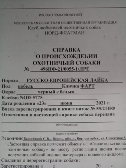 IMG-20210808-WA0002.jpg