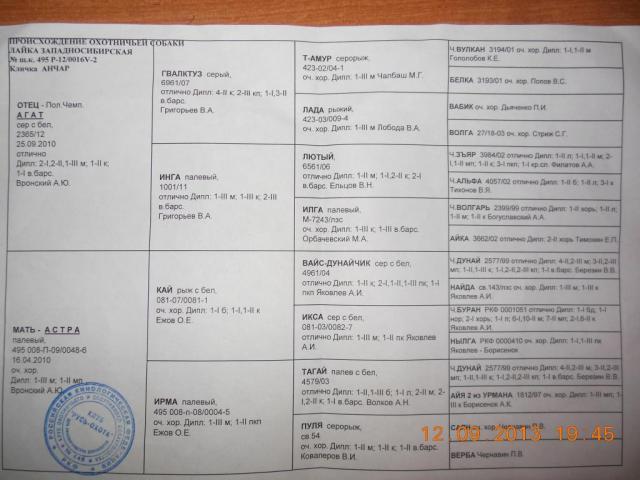 post-1876-0-99049700-1379000990_thumb.jp