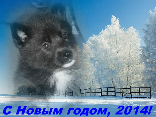 post-553-0-44330100-1388003757_thumb.jpg