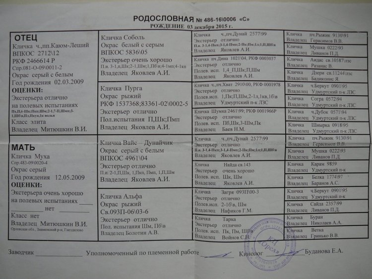 P1170604.JPG