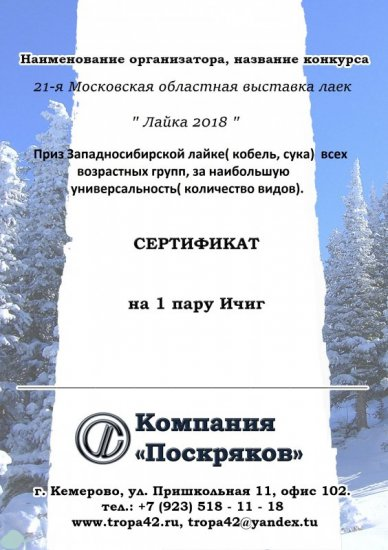 Сертификат 2018 — копия.jpg